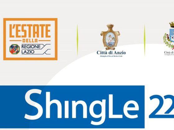 Primo premio Biennale d'Arte Contemporanea Shingle22j